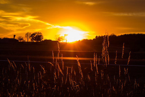 sunset orange wheat kansassunset