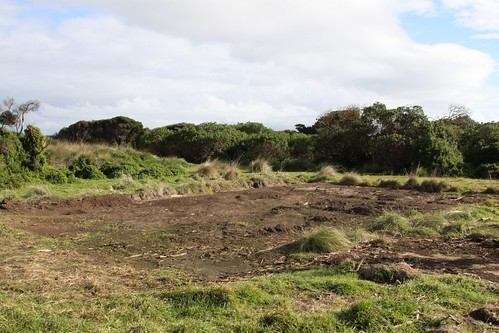 Former home site awaiting revegetation works