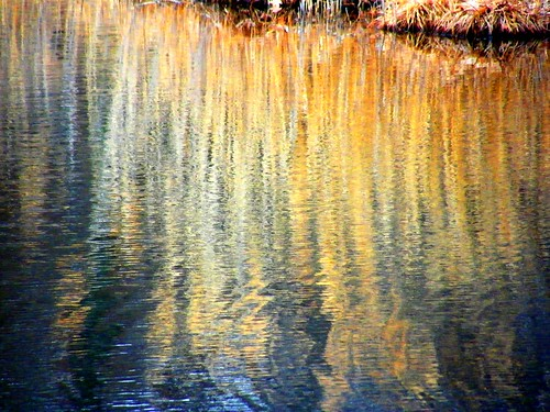 Ripple Reflections