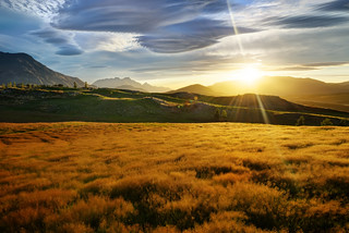 Bendemeer Estates in New Zealand | by Trey Ratcliff
