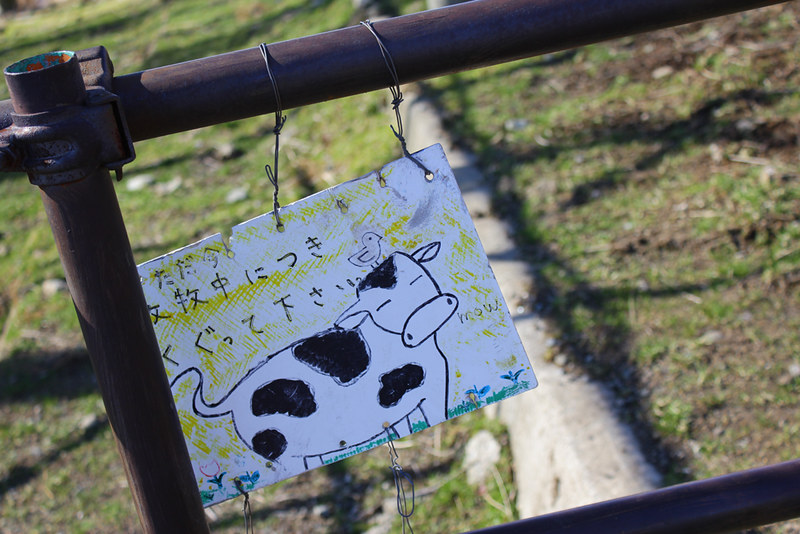 20130127_大野山_0029