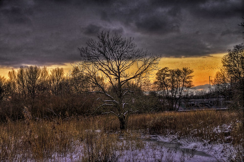 winter snow cold denmark hdr aarhus mokastet photographyforrecreation
