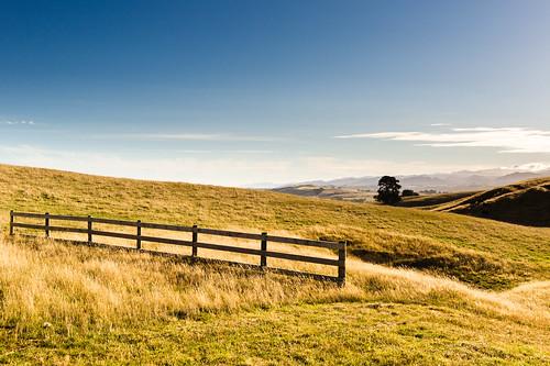 leica blue newzealand mountains tree grass 35mm fence gold farm 14 fields asph masterton m9 fle summiluxm explored alienskinexposure
