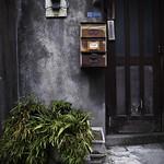 Behind the Temple Garden, Asakusa