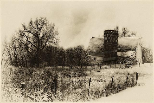 Winter, Farm Country