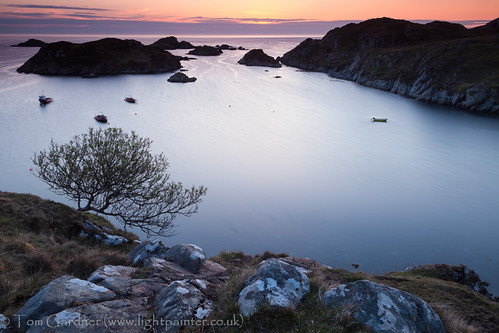 uk greatbritain sunset sea plants plant tree islands coast scotland highlands flora rocks europe european unitedkingdom britain scottish naturalhistory highland coastal environment british sutherland gloaming