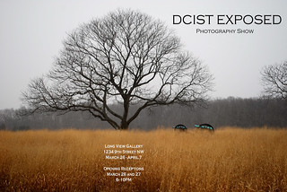 DCist Poster