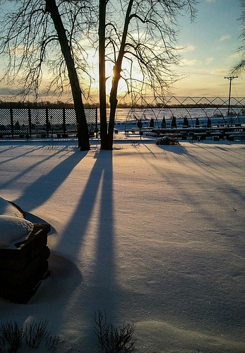 snow sunrise shadows branches samsung basswood glittering