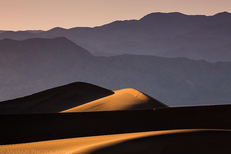 Dune Evening