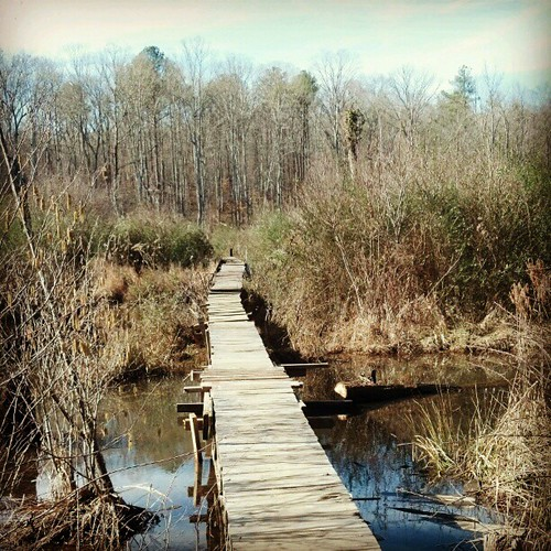 bridge marsh georiga douglasville clintonnaturepreserve uploaded:by=instagram keatoncreek