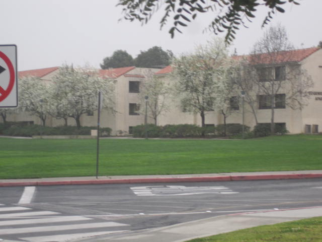 Loyola Maymount Univ.