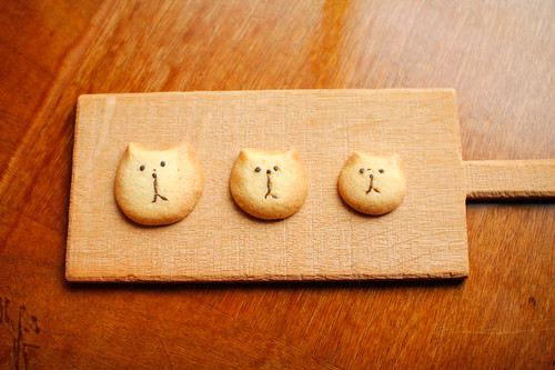 3 cat sisters cookie | by はしー:Hassy