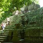 Guatemala, Ruinas de Tikal 26
