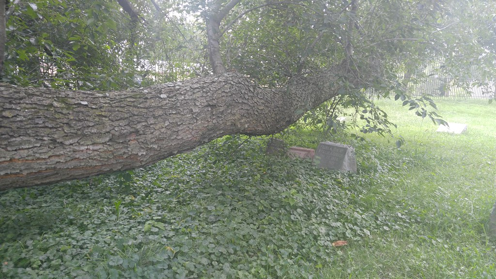 Kansas City Botanical Gardens >> 0828161343 Powell Gardens Flickr