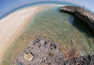 Uplifted shore platform and cyclone-derived debris flow deposits, northeastern coast of the Arabian Peninsula, Sultanate of Oman / アラビア半島北東海岸(オマーン国)の隆起ベンチとサイクロンによる砂礫堆積物