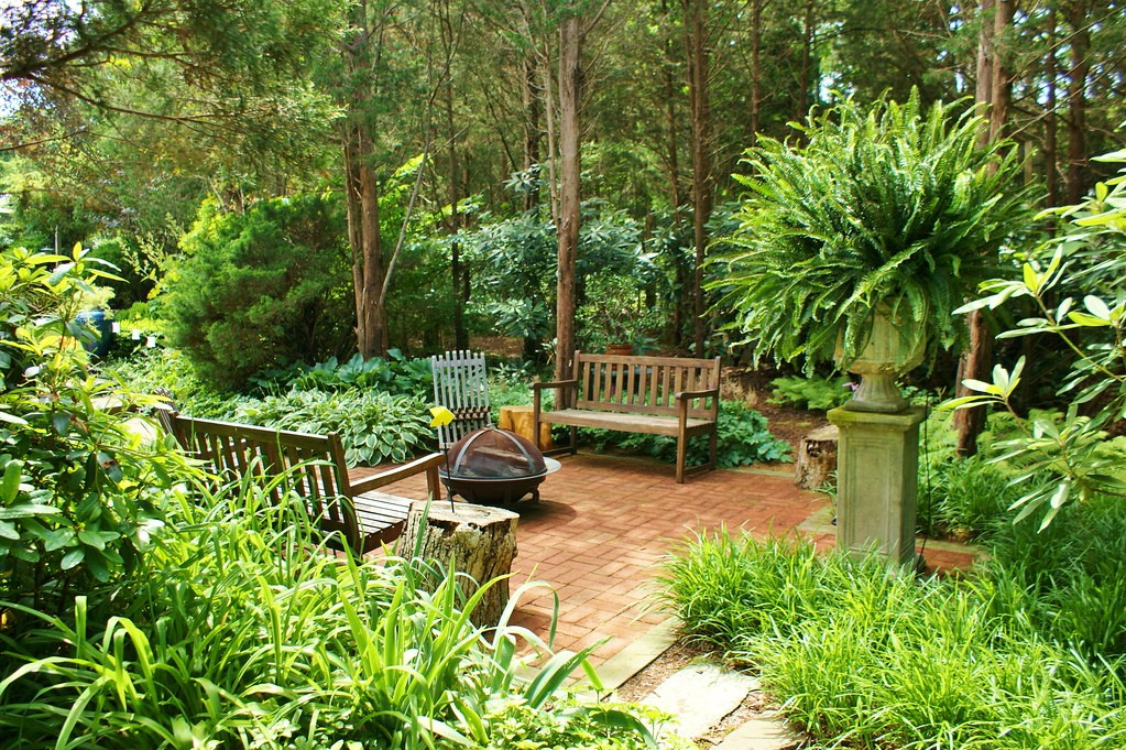 Shade Garden Plants Landscaping Ideas Backyards