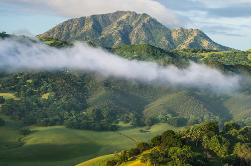 california morning trees usa mountains green grass fog clouds sunrise landscape spring pentax hiking trails hills bayarea eastbay mtdiablo antioch k5 blackdiamond ebrpd contracostacounty eastbayregionalparkdistrict ebparks ilikethenight marccrumpler ebparksok pentaxk5 pentax60250