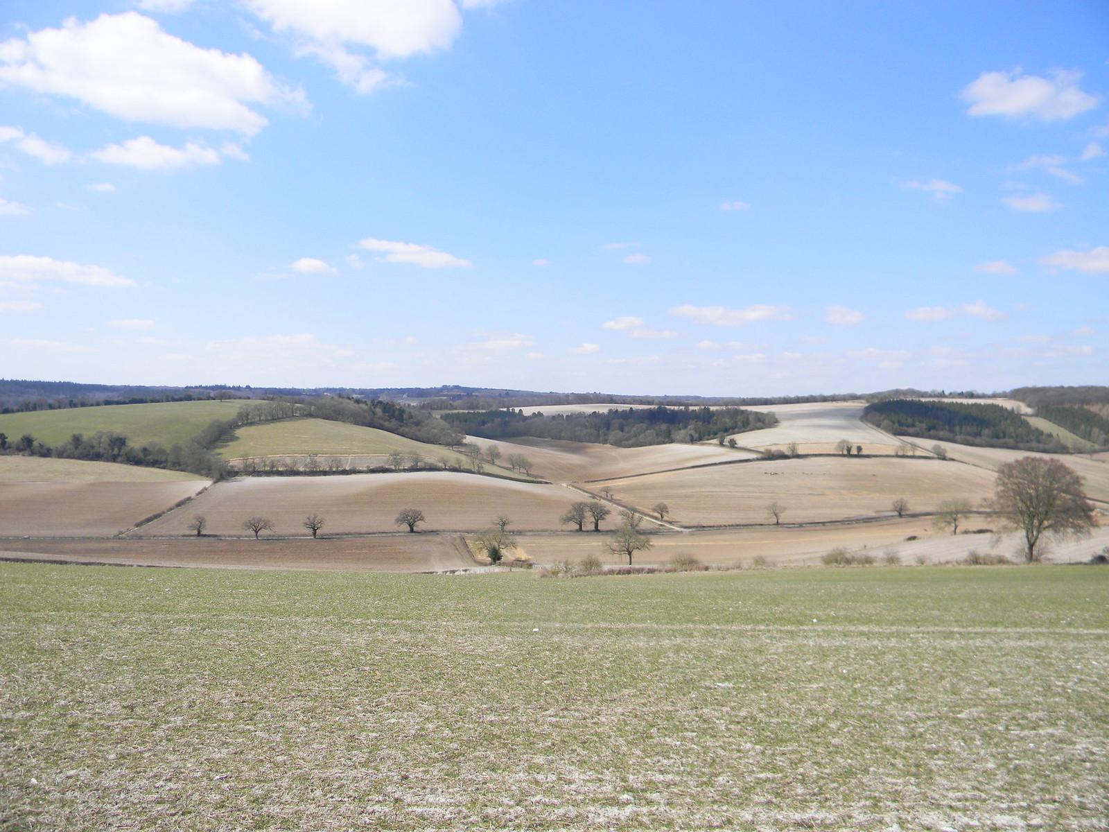 Fields, Stonor valley Henley via Stonor (Stonor Shortcut)