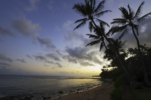 ocean beach june photoshop sunrise hawaii sand rocks day waves cloudy oahu palmtrees northshore 2012 tonykuyperactions