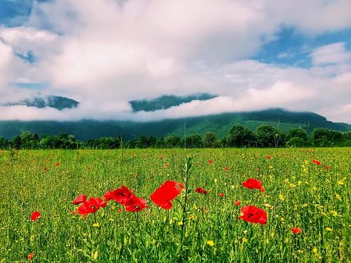 blazujskidrum sky nature البوسنةوالهرسك ساراييفو 2018 maj landscape mak iphone7plus bosnaihercegovina sarajevo igman vrelobosne ilidza