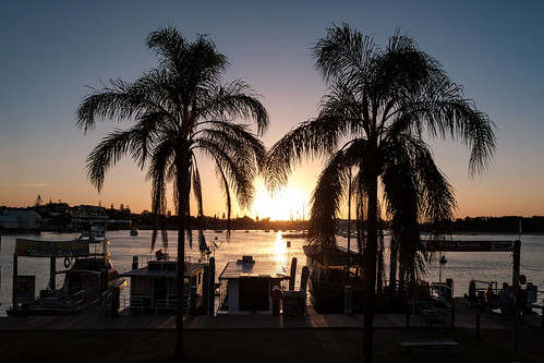 boats houseboat sunset sun trees palms palmtrees hastings hastingsriver portmacquarie river nsw australia sky water evening silhouettes tree boat