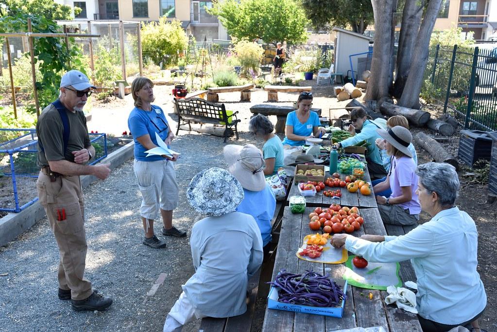 Dsc 7650 sm master gardeners of santa clara county flickr - Master gardeners santa clara county ...