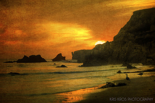 ocean california ca sunset sun beach nature birds clouds gold golden bravo rocks state pacific time seagull wave el malibu boulders kris lover kkg matador kros kriskros timeisgold kkgallery