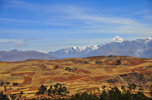 Quilted Fields, Andes | by Rod Waddington