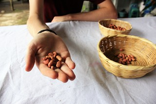 Peanut butter workshop with De La Gente Antigua Guatemala - Charlie on Travel - sorting the peanuts | by CharlieOnTravel