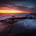 Image: Cracker Sunrise