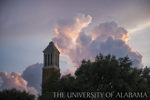 Denny Chimes in the Evening