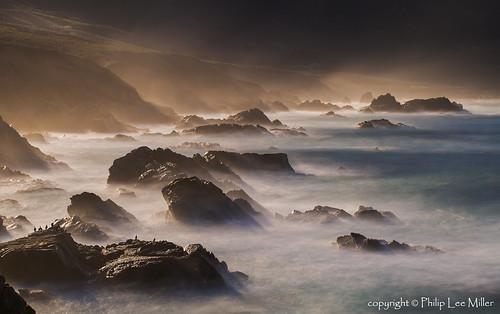 california birds cormorants landscapes rocks seascapes pacificcoast morningmist longexposures d600 phalacrocoraxmelanoleucos garrapatastatereserve
