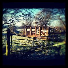 Stretford on a winters day, bottom of Hawthorn Lane