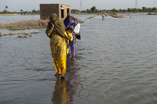 44356-022: National Flood Emergency Response in Pakistan | by Asian Development Bank
