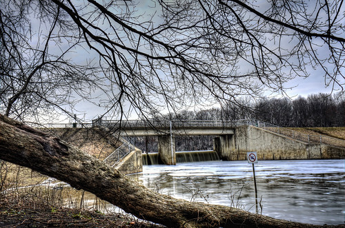 trees nature water fences railings hdr creeks dams hff cookcountyforestpreserve nikkor18300mm fencefriday busseforestnaturepreserve bussedam