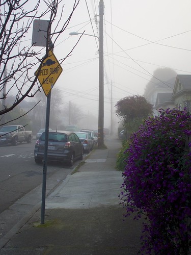 Oakland Fog | by Señor Danimal