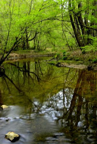 water creek reflections georgia landscape wolfcreek photographyforrecreation vigilantphotographersunite vpu2 vpu3 vpu4 vpu5
