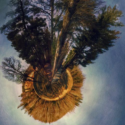 forest canon virginia pasture littleworld 60d polardistortion
