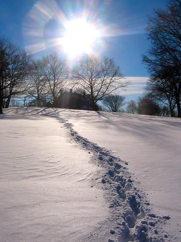 newyorkcity winter snow tracks footprints statenisland latourettegolfcourse