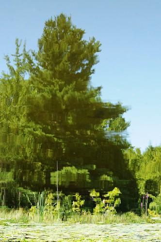 ontario canada reflection longlake lanarkcounty tayvalleytownship
