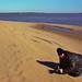 February Photographer at waterfront Leesylvania