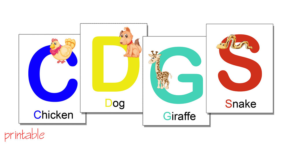 picture about Abc Flash Cards Printable named alphabet flash playing cards with pets - printable PDF blogged