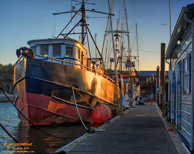 Fishing Boats docked at the Port of Siuslaw in Florence OR