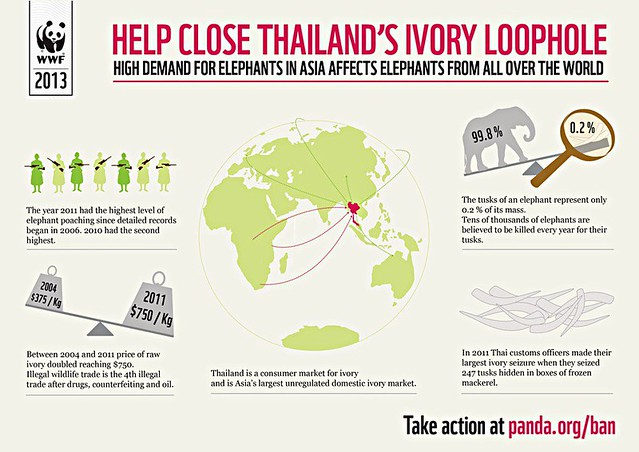 Ivory loophole, fave this image and sign petition to save elephants