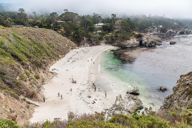 Sandy Beach at Point Lobos