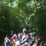 Guatemala, Ruinas de Tikal 05