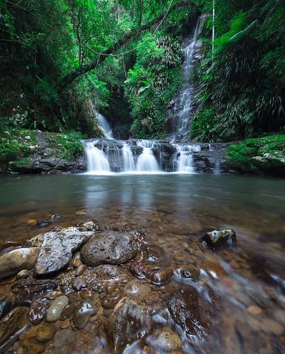 longexposure oreilly nature water forest landscape waterfall rainforest wide australia wideangle queensland goldcoast lamingtonnationalpark springbrook hinterland landscapephotography oriellys elabanafalls canon6d rocksgreen