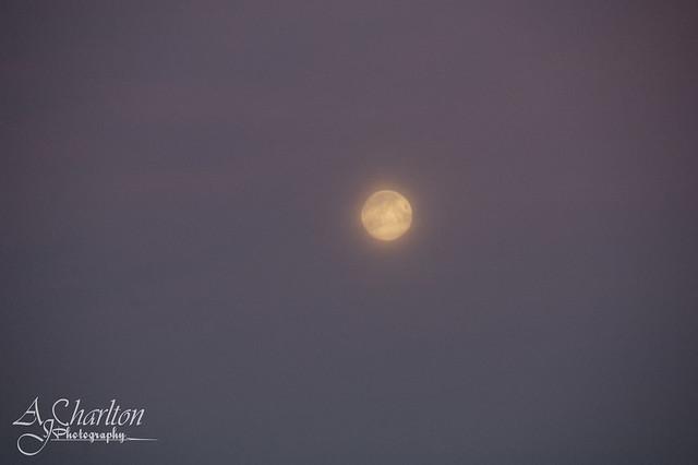 Photograph 023 - Moonlight