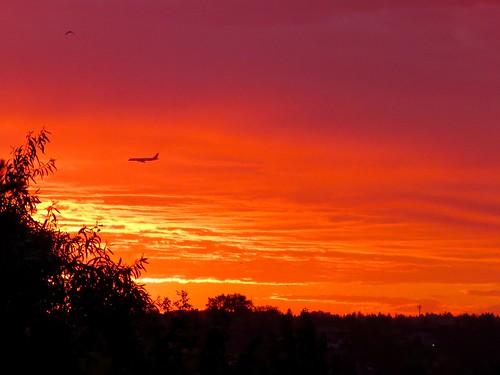 calgary alberta canada 365 sky skies sunset sunrise red