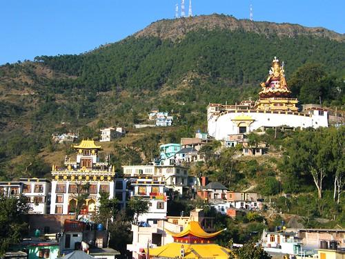 india statue buddhist buddhism padmasambhava himachalpradesh rewalsar theindiatree